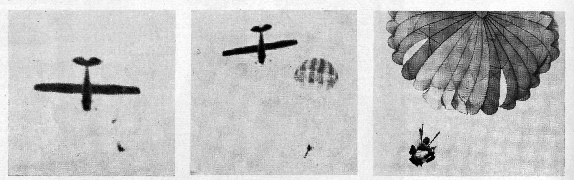 My father parachuting essay