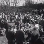 Princeton vs. Yale, 1955